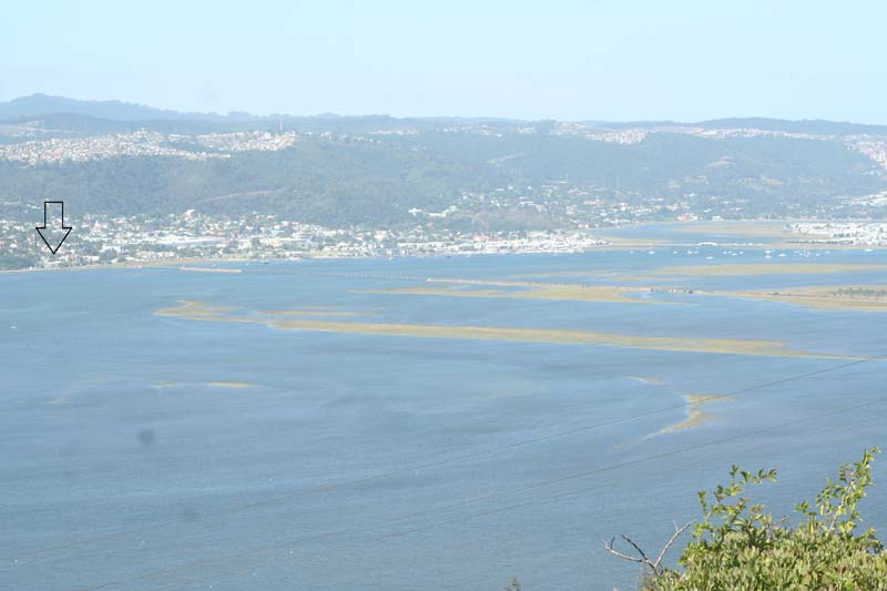 Guest House in Knysna for sale